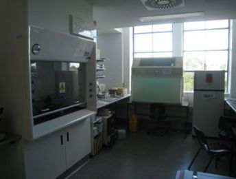 The Lab in the early years